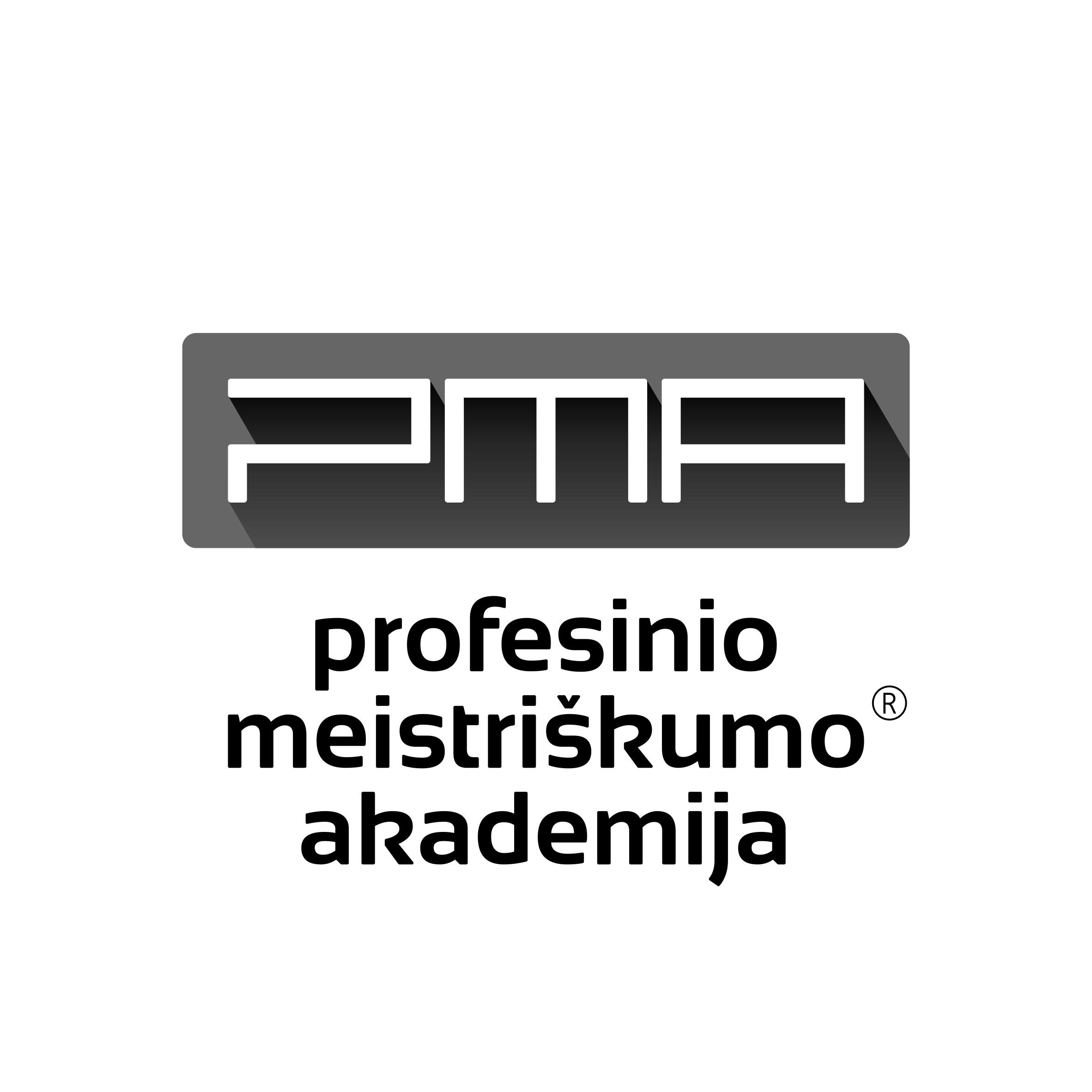 Profesinio meistriškumo akademija